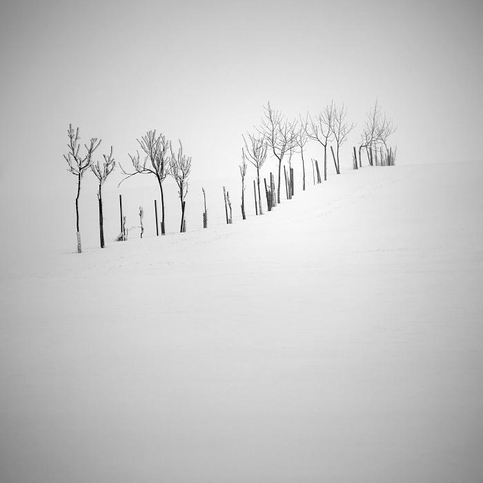 Пейзажные фотографии Даниел Жежиха 15
