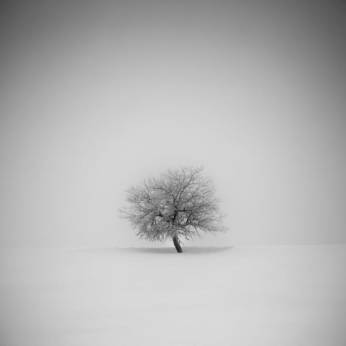 Пейзажные фотографии Даниел Жежиха 16