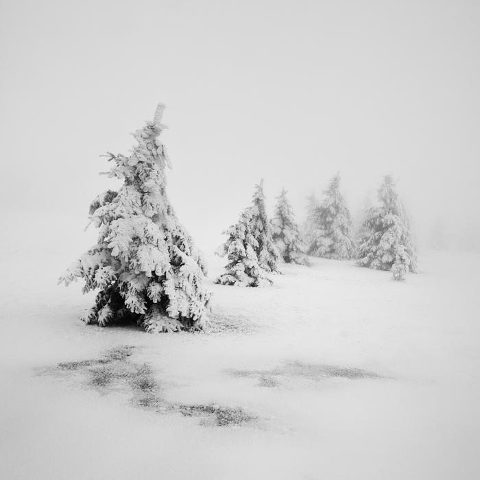Пейзажные фотографии Даниел Жежиха 19
