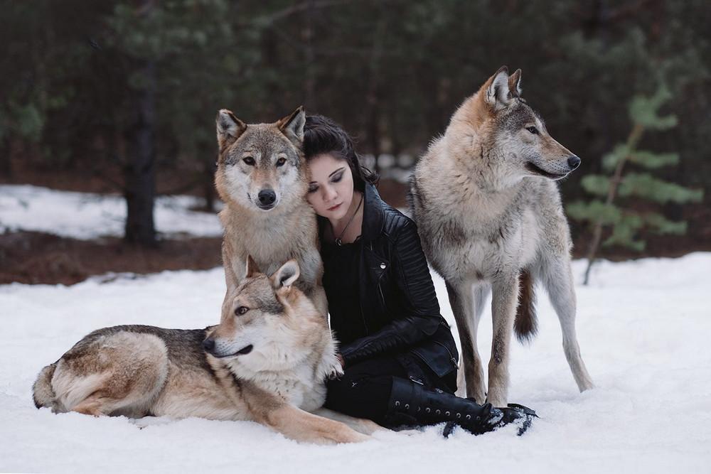 Фотограф Ольга Баранцева. Фотосессии с дикими животными и творческие портреты 20