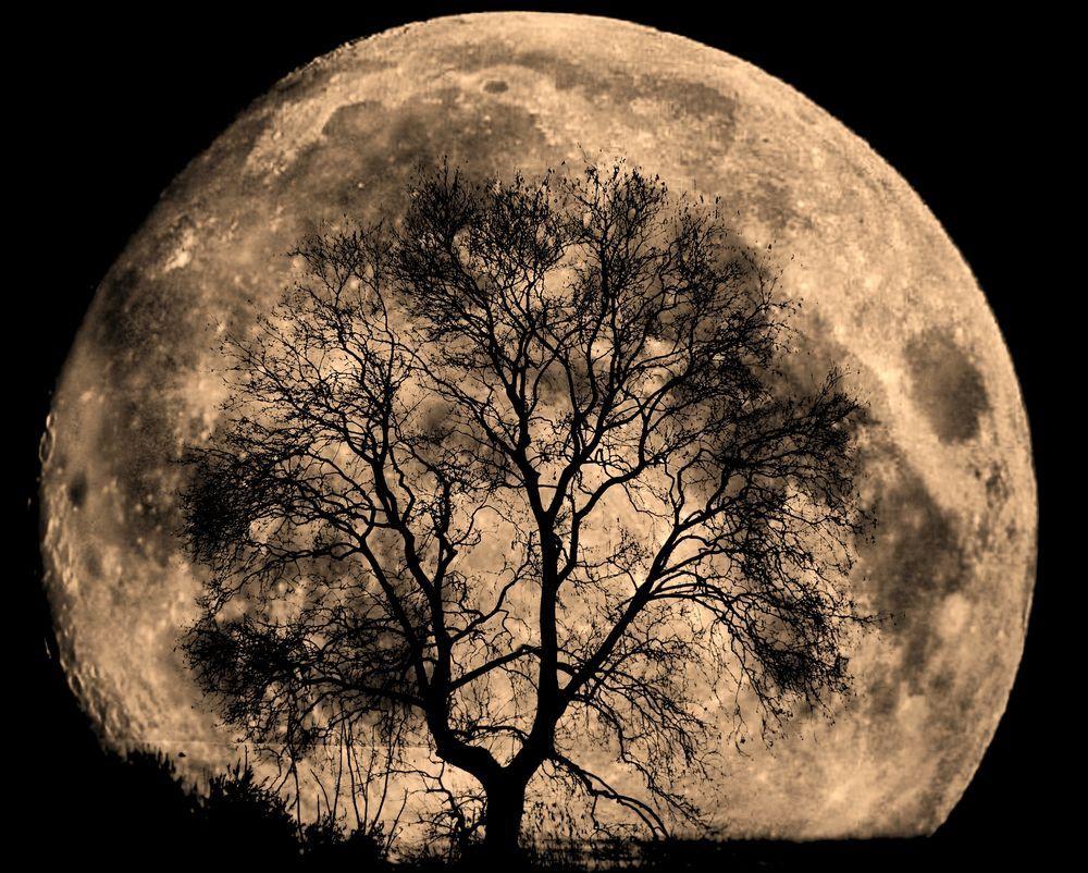 The July Full Moon