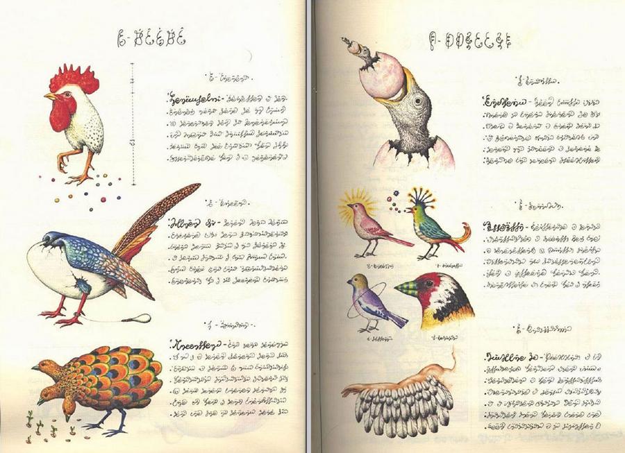 «Кодекс Серафіні» - сюрреалістична енциклопедія неіснуючого світу Луїджі Серафіні 22