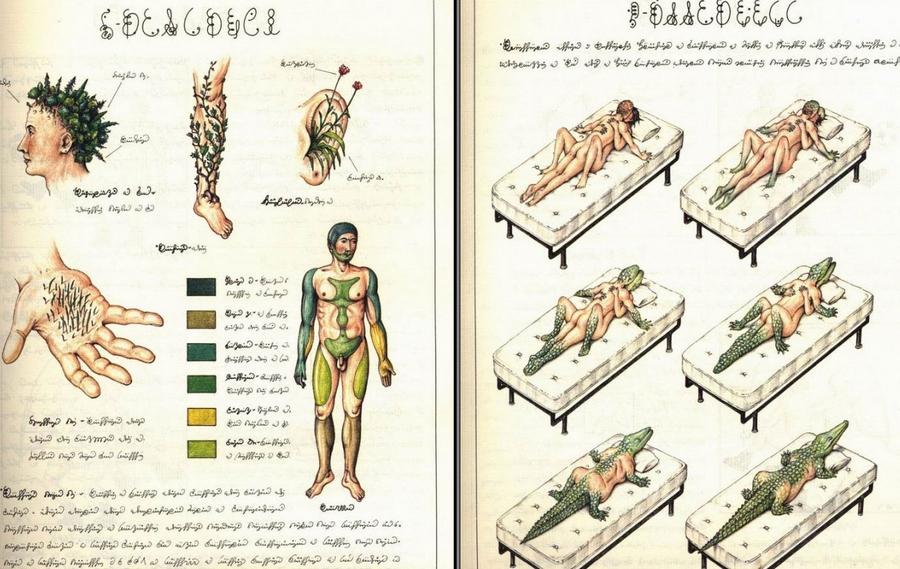 «Кодекс Серафіні» - сюрреалістична енциклопедія неіснуючого світу Луїджі Серафіні 24