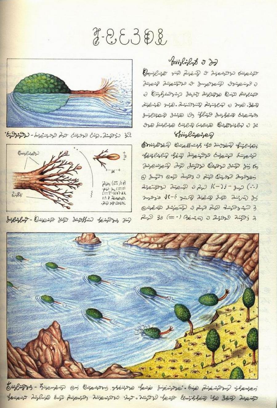 «Кодекс Серафіні» - сюрреалістична енциклопедія неіснуючого світу Луїджі Серафіні 7