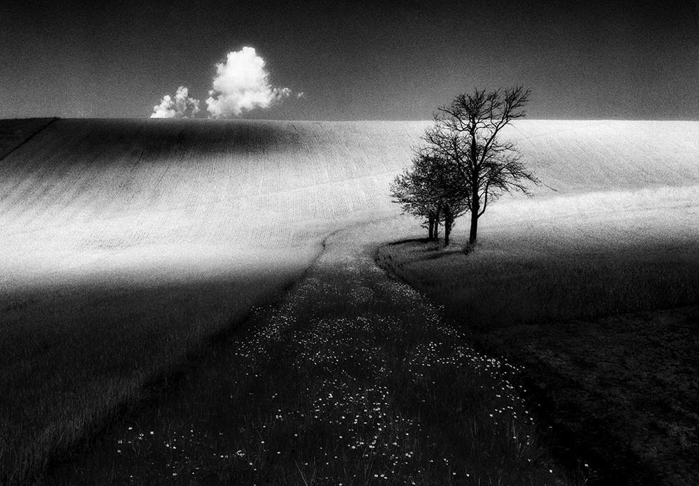 Победители конкурса чёрно-белой фотографии MonoVisions Photography Awards  11