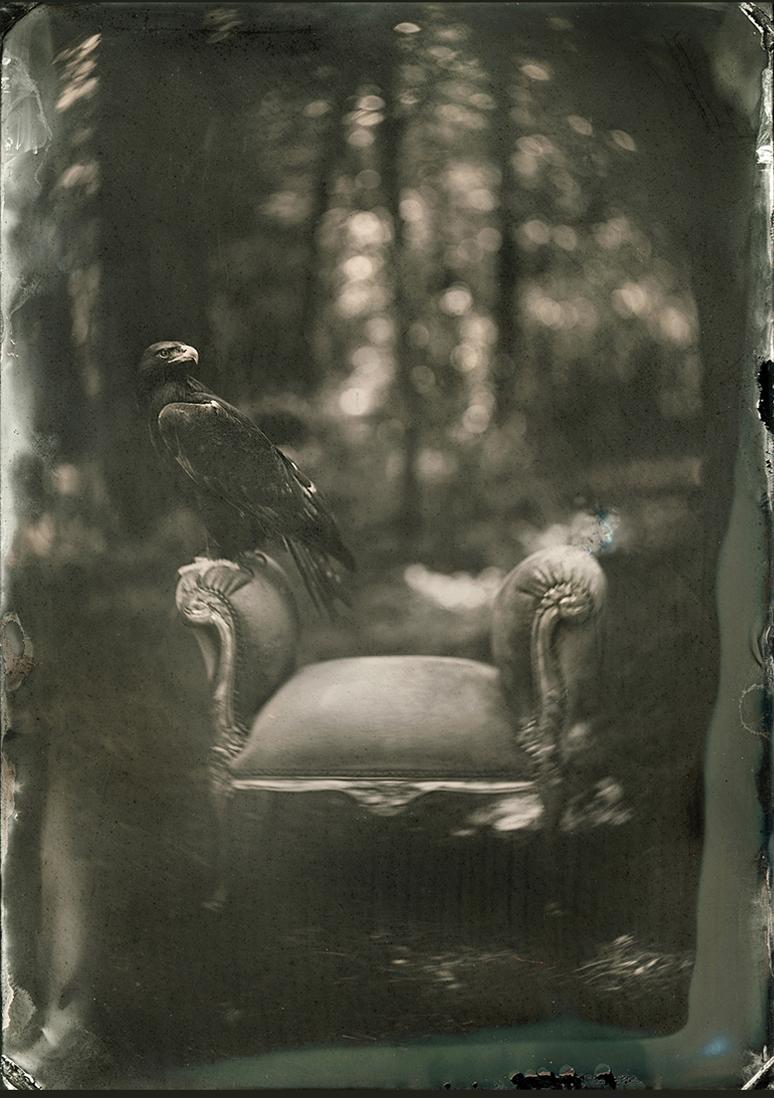 Победители конкурса чёрно-белой фотографии MonoVisions Photography Awards  12