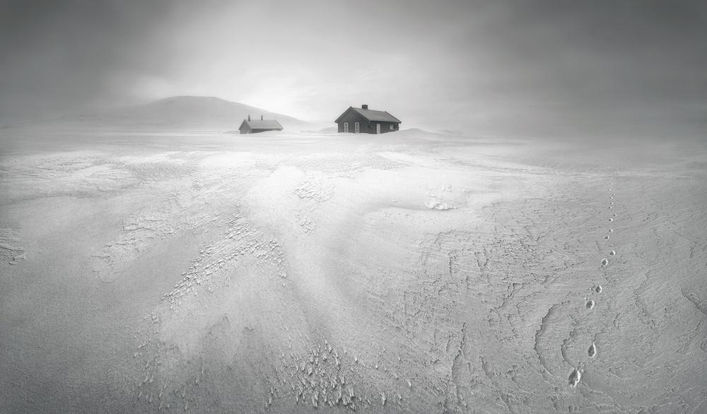 Победители конкурса чёрно-белой фотографии MonoVisions Photography Awards  14