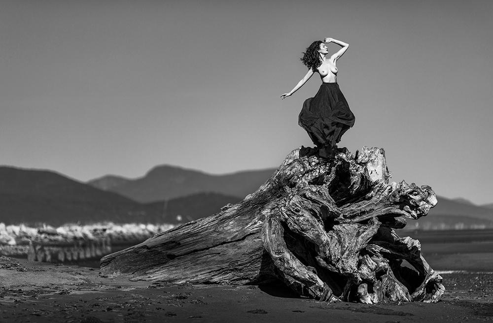 Победители конкурса чёрно-белой фотографии MonoVisions Photography Awards  21