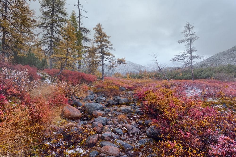 Осенняя Колыма, туманы Приморья, озёра и горы в пейзажных фотографиях Тони Андреевой 12