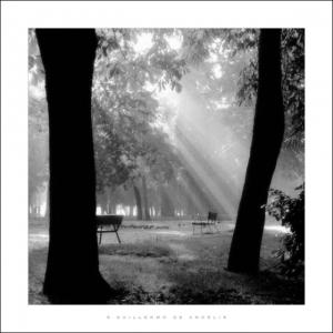 Фотограф Гильермо Де Анджелис - гармония и спокойствие в квадратном формате