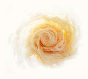 Ловкий фотограф Марк Моусон снимает розы из красок и воды