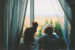 Взгляд из окна: увлекательные цветные фотографии