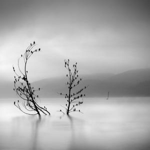 Чёрно-белые пейзажи, уходящие за пределы реальности. Фотограф Джордж Дигалакис
