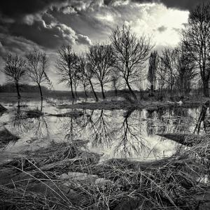 Коллекция талантливых черно-белых фотографий