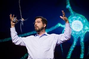 Как думать: нейробиолог Эд Бойден о скрытых возможностях мозга