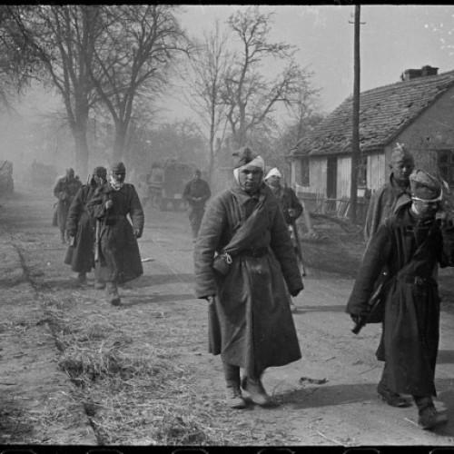 Случайно обнаружились уникальные фотографии Второй мировой войны