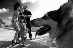 Обычная жизнь глазами израильского фотографа Саги Кортлера