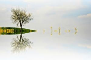 Сюрреалистическая симметрия, иллюзорность и минимализм в фотографиях Адриенн Баласко