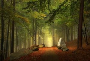 Прекрасные пейзажи для Вашего вдохновения