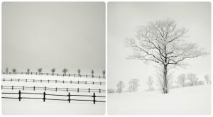 Припорошенный минимализм. Фотограф Йозеф Хофленер