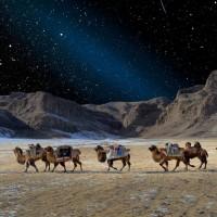 Простор, великолепие и простота – Монголия в фотографиях Марка Прогина