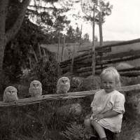 История в фотографиях: люди, времена и нравы