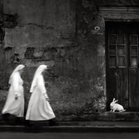 Классическая латиноамериканская фотография: элегичная и многослойная