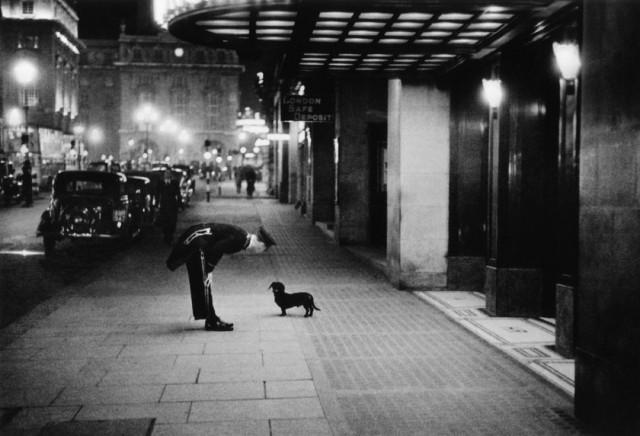 Ночной портье и такса, Лондон, 1938. Автор Курт Хаттон