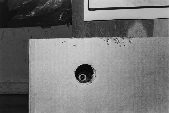 «Эрни - мемуары фотографа». Автор Тони Мендоса (29)
