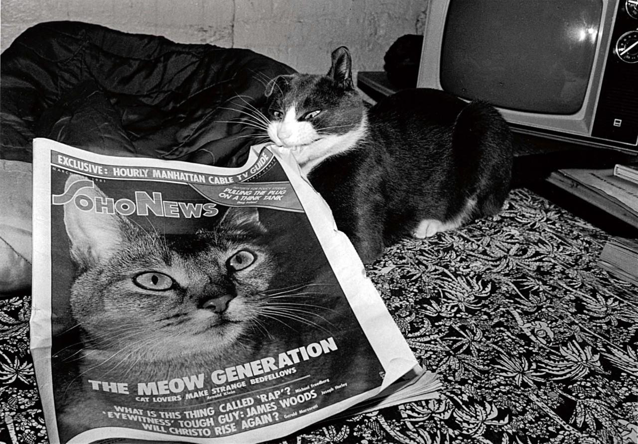 «Эрни - мемуары фотографа». Автор Тони Мендоса (3)