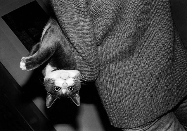 «Эрни - мемуары фотографа». Автор Тони Мендоса (2)