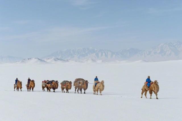 «Шёлковый путь зимой». Монголия, 2014. Фотограф Марк Прогин