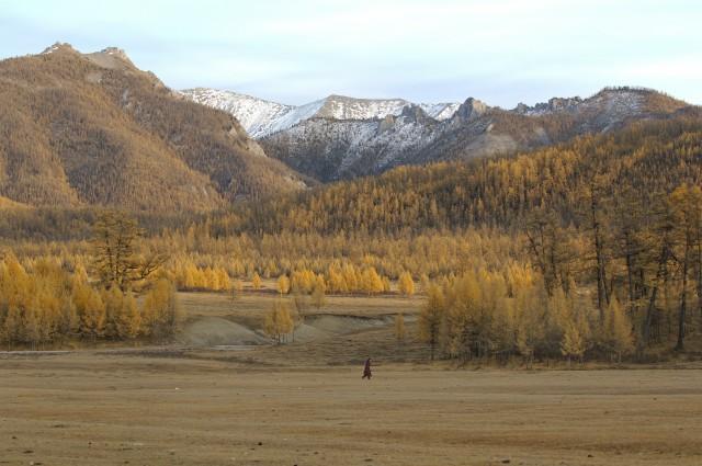 «Вышивка золотом и шёлком». Монголия, 2007. Фотограф Марк Прогин