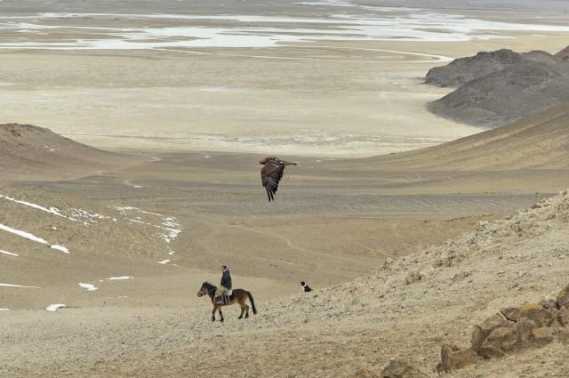 «Золотой орёл», Монголия, 2011. Фотограф Марк Прогин