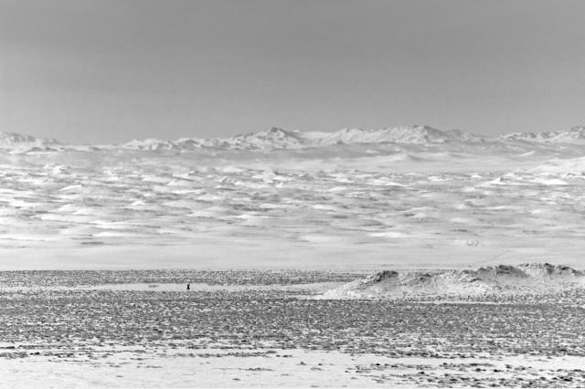 Фотографии Монголии. Автор Марк Прогин (12)