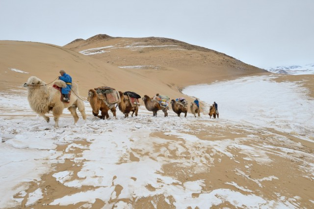 Фотографии Монголии. Автор Марк Прогин (18)