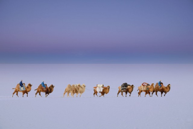 Фотографии Монголии. Автор Марк Прогин (29)