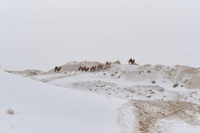 Фотографии Монголии. Автор Марк Прогин (35)