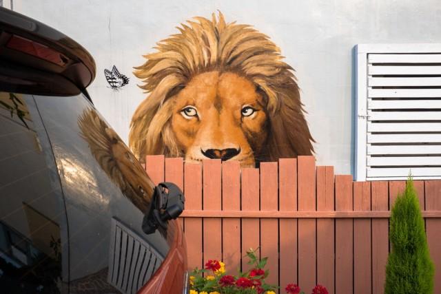 Уличный фотопроект «Катарсис». Автор Джеффри Де Кейзер (28)