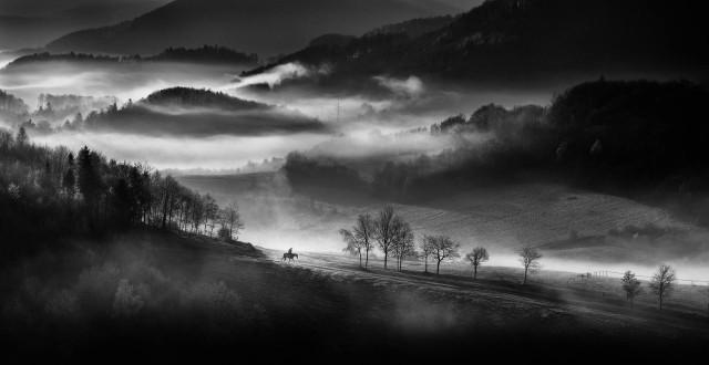 Одинокий всадник безмятежным туманным утром в горах Словакии. Автор Петер Свобода