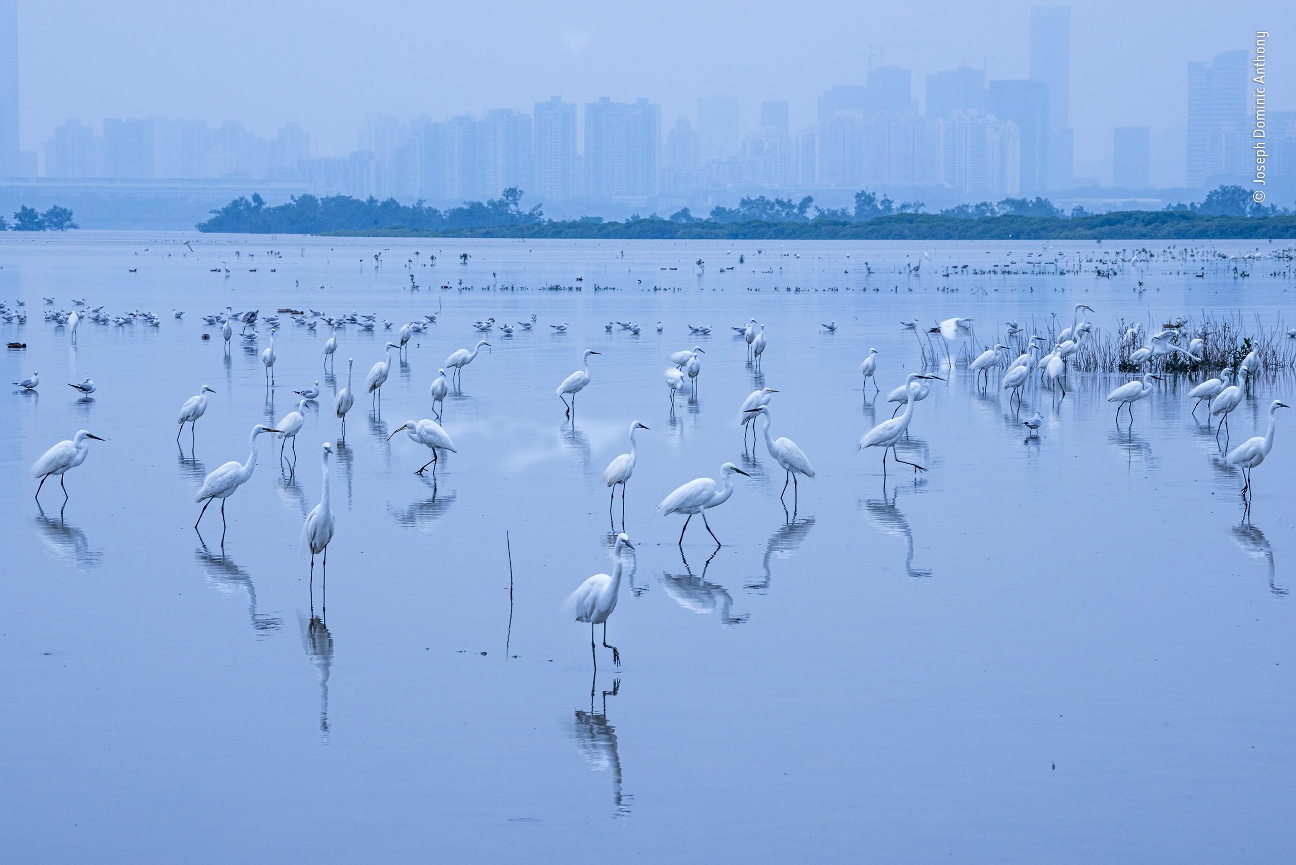 «Приграничное пристанище». Фотограф Джозеф Доминик Энтони