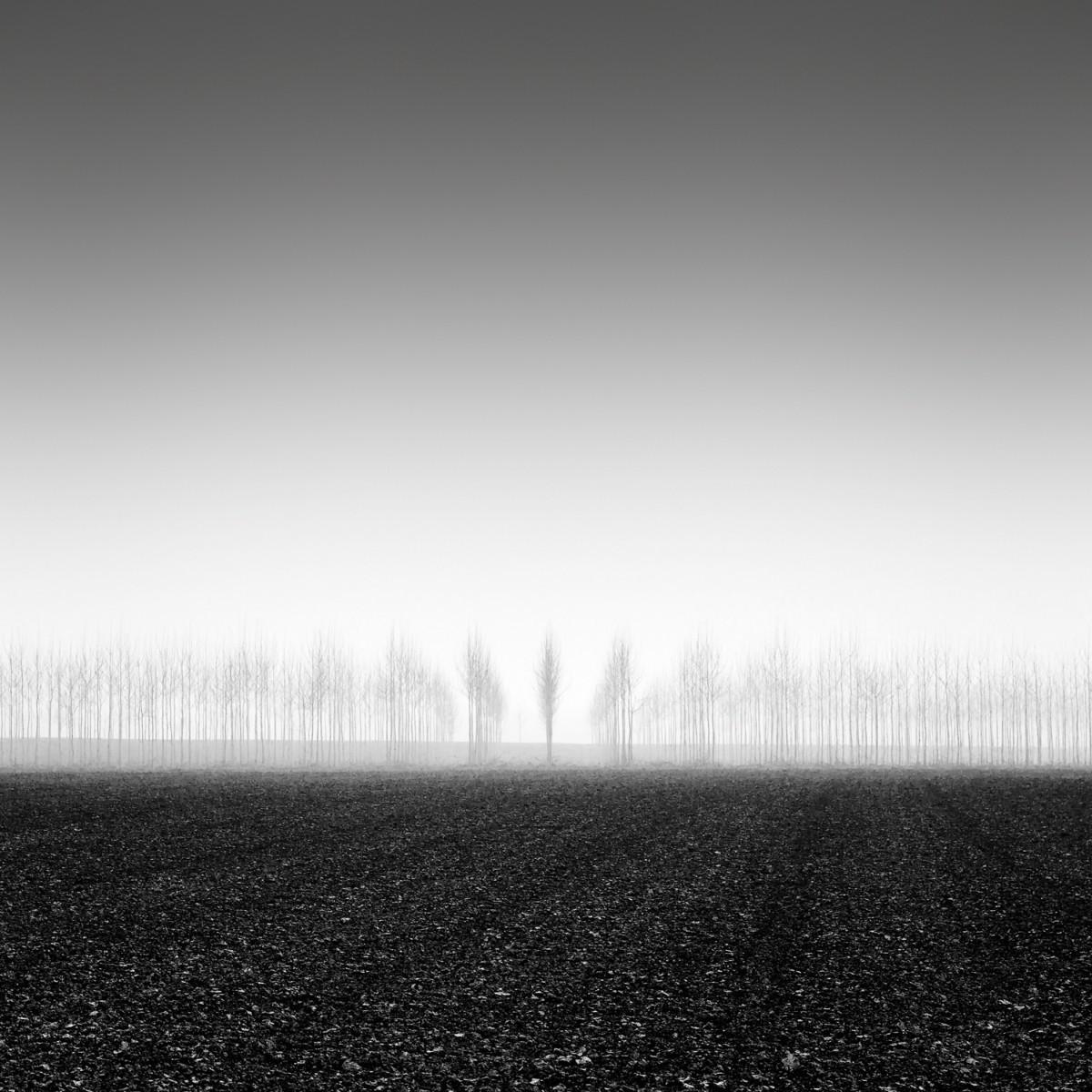 Утренний туман. Автор Розарио Чивелло