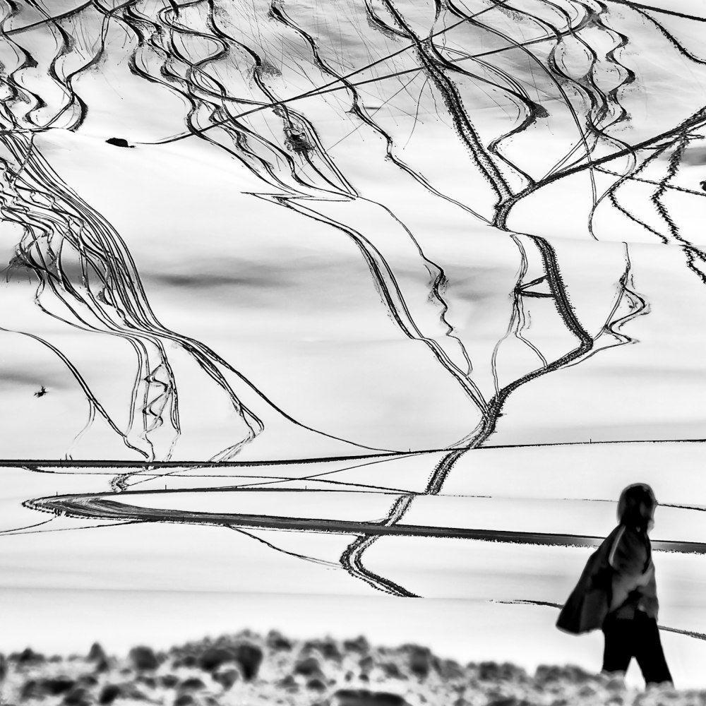 «Знаки». Автор Розарио Чивелло (11)