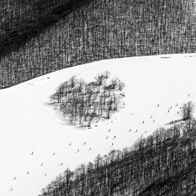 «Знаки». Автор Розарио Чивелло (4)