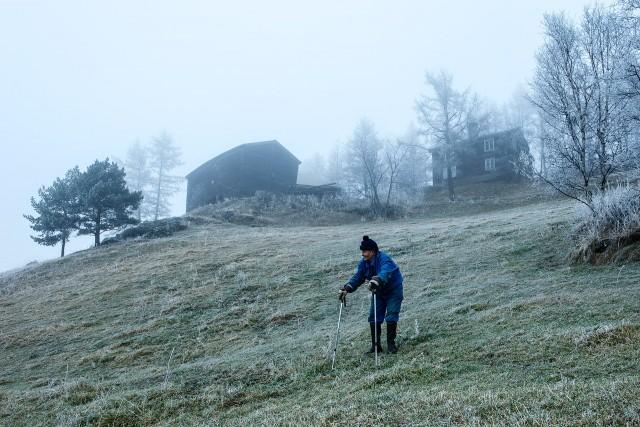 Фотопроект «Ула Хауген». Автор Нильс Тьюн (4)