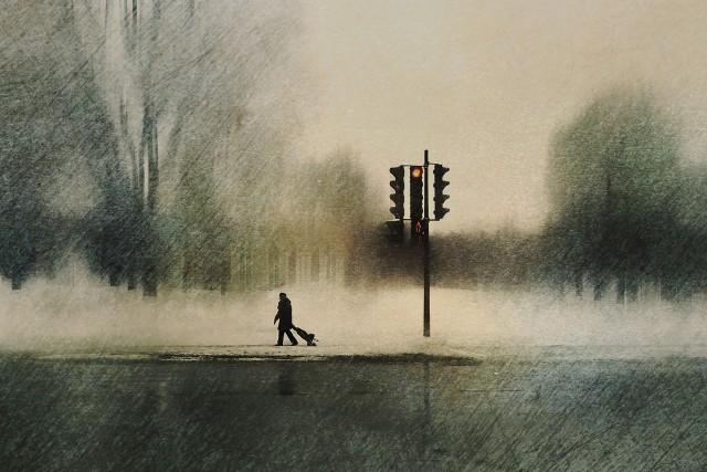 Городской парк. Автор Даниэль Кастонгуэй