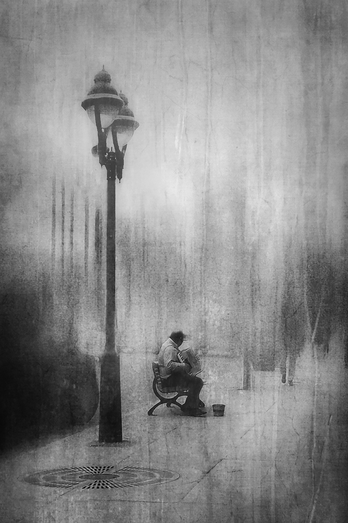 Музыкант. Автор Даниэль Кастонгуэй