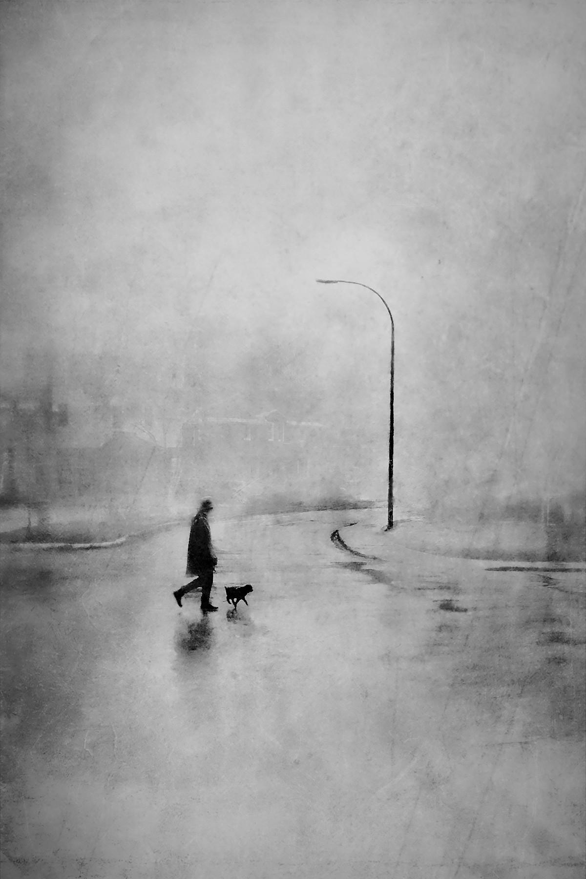 Прогулки Брута. Автор Даниэль Кастонгуэй