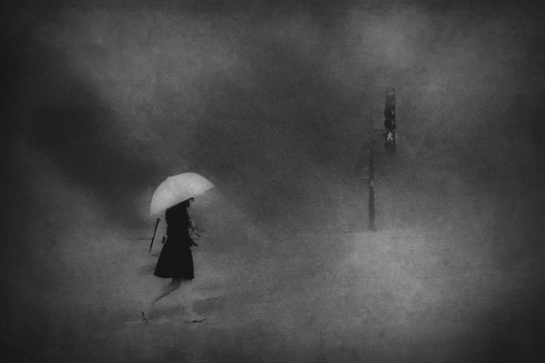 Элмхерст-стрит. Автор Даниэль Кастонгуэй