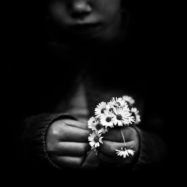 «Цветок». Автор Бенуа Корти